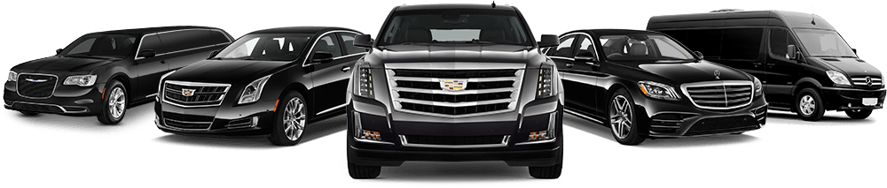 punta cana airport transfer
